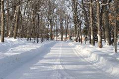 Le ski de fond permis au Bois de Coulonge