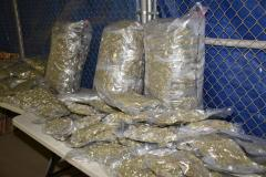 Vente et distribution de cannabis illicite: 4 personnes arrêtées
