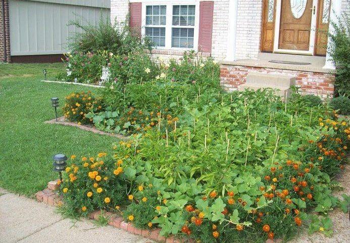 La Ville de Québec autorise le jardinage de façade