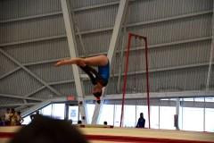 Les gymnastes regroupés à Beauport