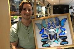 Festival des insectes: un projet en constante évolution