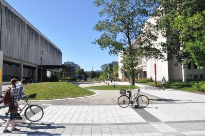 Adaptation au passage en zone jaune sur le campus de l'Université Laval