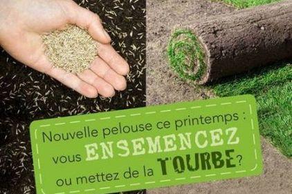Une pelouse saine est moins vulnérable