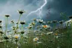 L'été sera frais et explosif