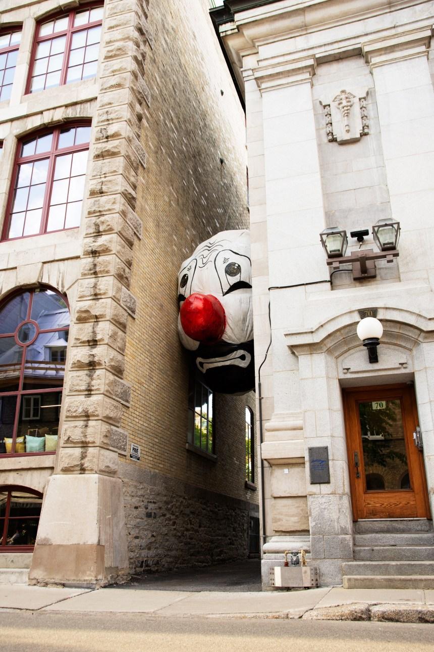 Les Passages Insolites prennent de l'ampleur et investissent le quartier Saint-Roch