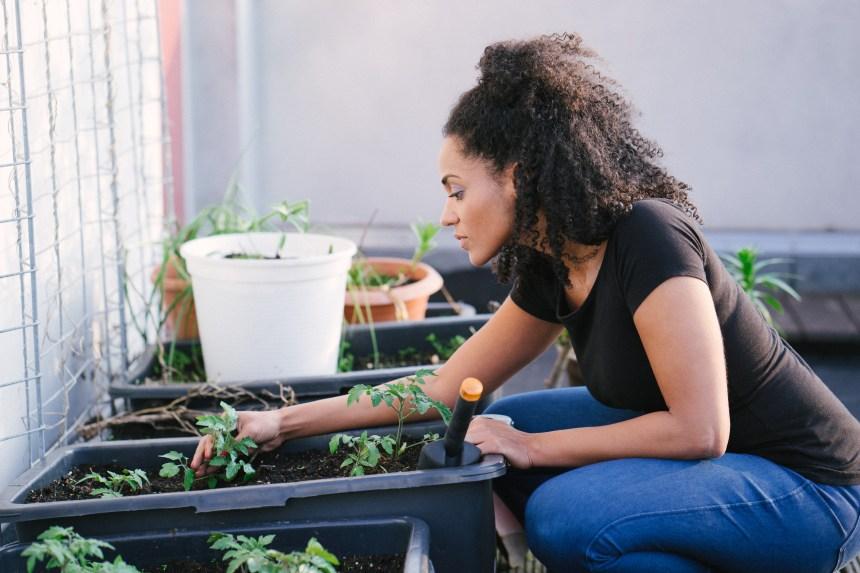 La construction, les jardineries et les garages ajoutés à la liste des services essentiels