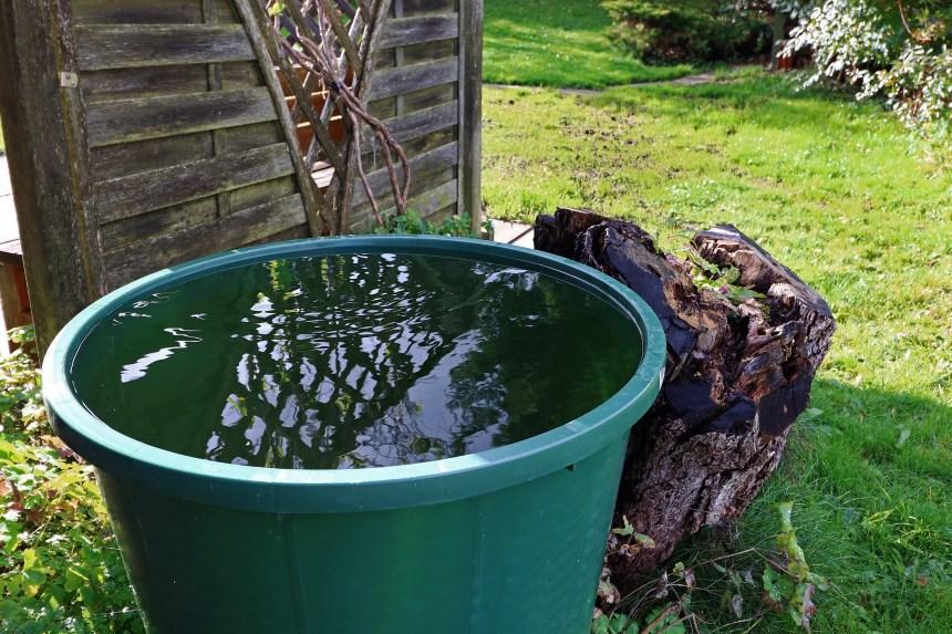 Barils récupérateurs d'eau depluie à coût modique