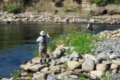 Le retour de la pêche au saumon sur la Jacques-Cartier?