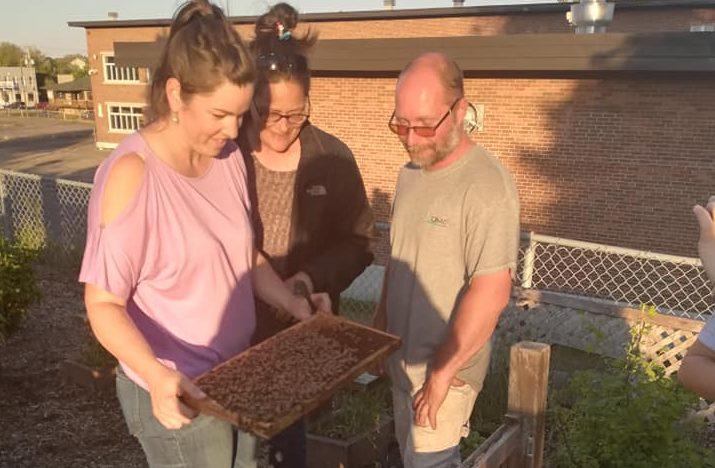 Cuisine collective Beauport: élan de générosité après l'incendie d'une ruche