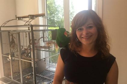 Un perroquet met en émoi Beauport: la grande virée de Papou
