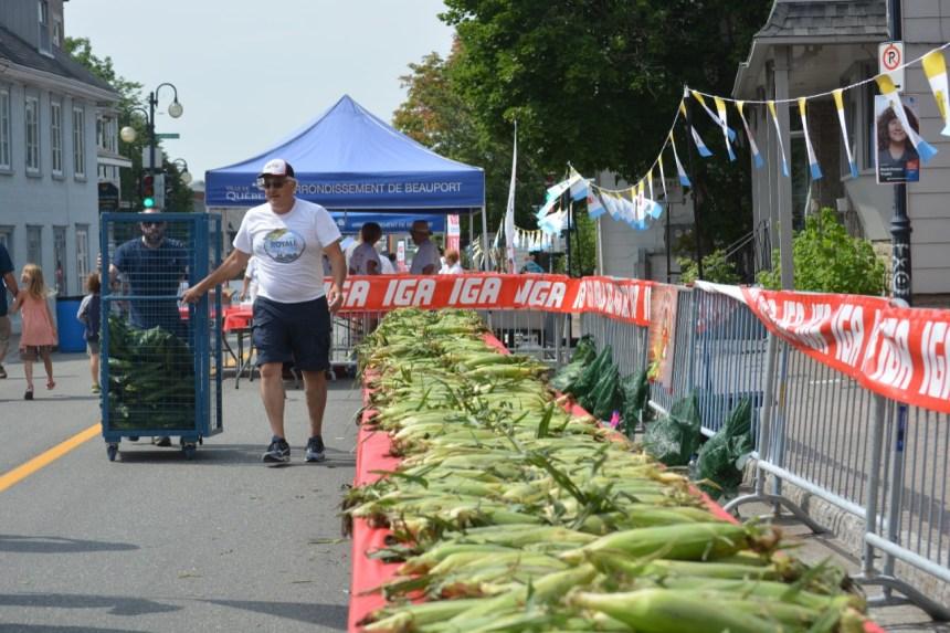 L'avenue Royale fête l'été: les épis sont de retour