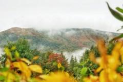 Une tendance douceur qui se dessine pour l'automne