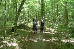 Une limite de randonneurs imposée au mont Wright