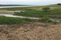 Conservation volontaire de milieux naturels dans la MRC de l'Ile d'Orléans