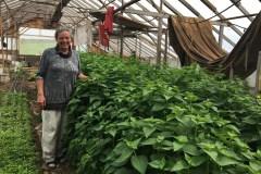 Bio ferme des Caps: Convictions environnementales à partager