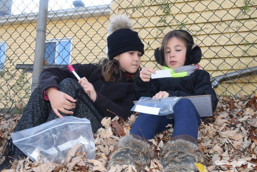 École primaire Saint-Claude – Des cours extérieurs offerts cette année