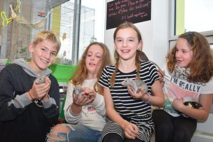 Retour sur novembre 2019 – Zoothérapie efficace à l'école de la Myriade de Val-Bélair