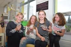 Projet pour les élèves de 5e année – Des rates entourées d'amour