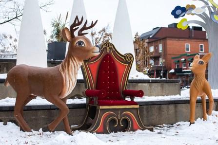 Activités festives sur l'avenue Maguire