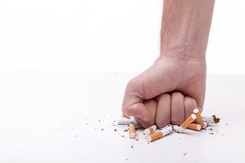 L'usage du tabac contribue à plus de 36 maladies cardiovasculaires