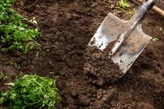 Mobilisation des producteurs autour des aménagements favorisant la biodiversité