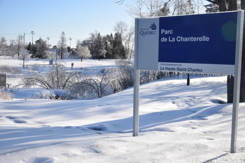 Nouvel oeuvre d'art au parc de La Chanterelle: L'Odyssée impliquée dans la création