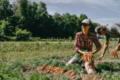 Un élan de solidarité envers les fermiers de famille