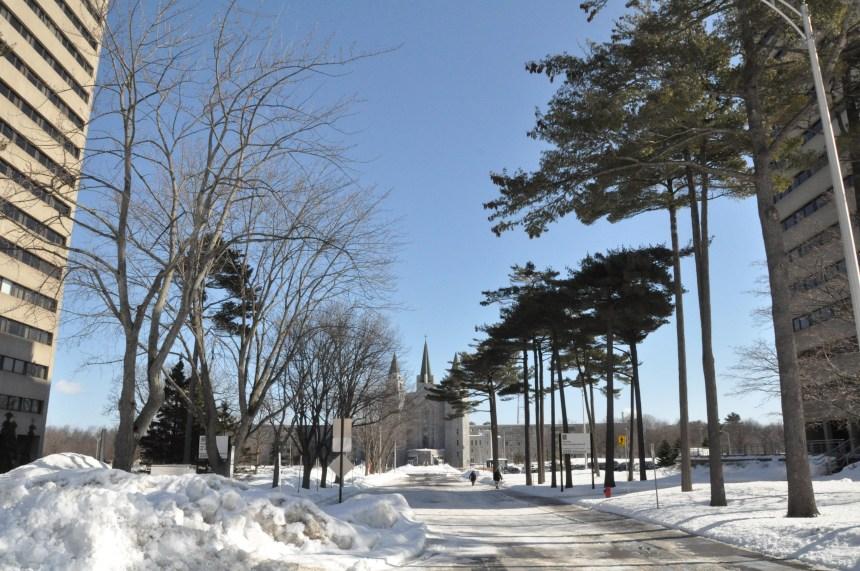 L'Université Laval planifie déjà son été et sa rentrée d'automne
