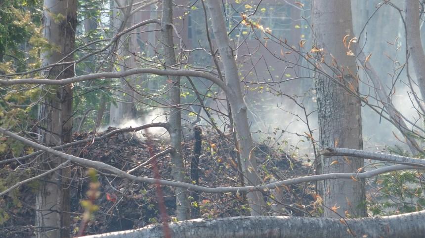 Feu de broussaille toujours actif à Val-Bélair