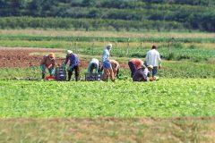 Pénurie de main-d'oeuvre: Bonne nouvelle pour les employeurs