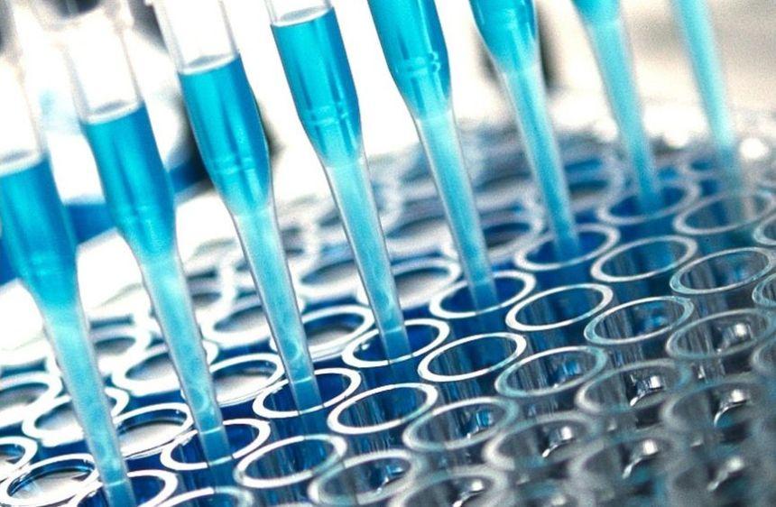 Medicago progresse dans la course au vaccin