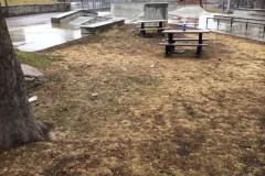 COVID-19: Début de l'entretien printanier dans les parcs municipaux