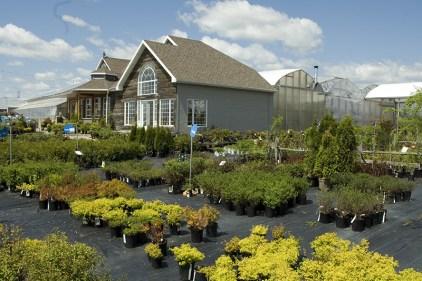 L'agriculture urbaine partagée par la ferme Bédard Blouin