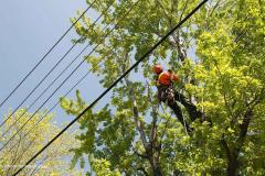 Plus de 20 000 clients privés d'électricité dans la région mercredi matin
