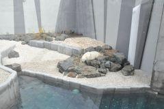 Des ours polaires moins à l'étroit à l'Aquarium