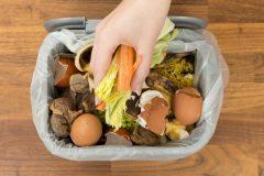 Collecte des résidus alimentaires: Lancement du projet pilote