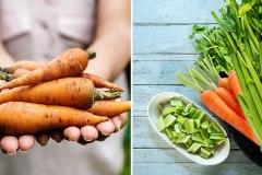 Comment conserver vos carottes et céleris pour qu'ils restent savoureux