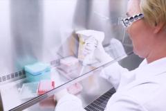 Medicago progresse vers un vaccin contre la Covid-19