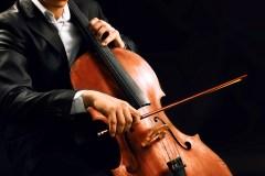 Annulation de la 38e saison de Musique de chambre