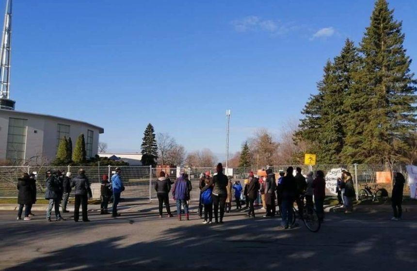 Mobilisation pour conserver les arbres autour de l'église Saint-Louis-de-France
