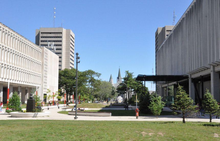 Record d'employeurs au Carrefour virtuel de l'emploi à l'Université Laval
