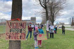 Des citoyens dénoncent l'abattage le long d'Hochelaga