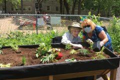 Jardiner pour éveiller les sens des résidents