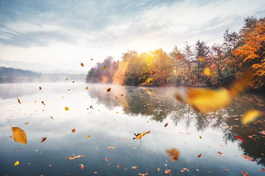 Un automne chaud avec une cassure abrupte