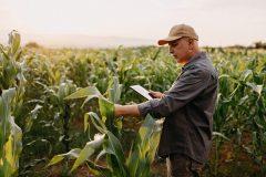 De l'aide psychologique pour les agriculteurs de la Capitale-Nationale