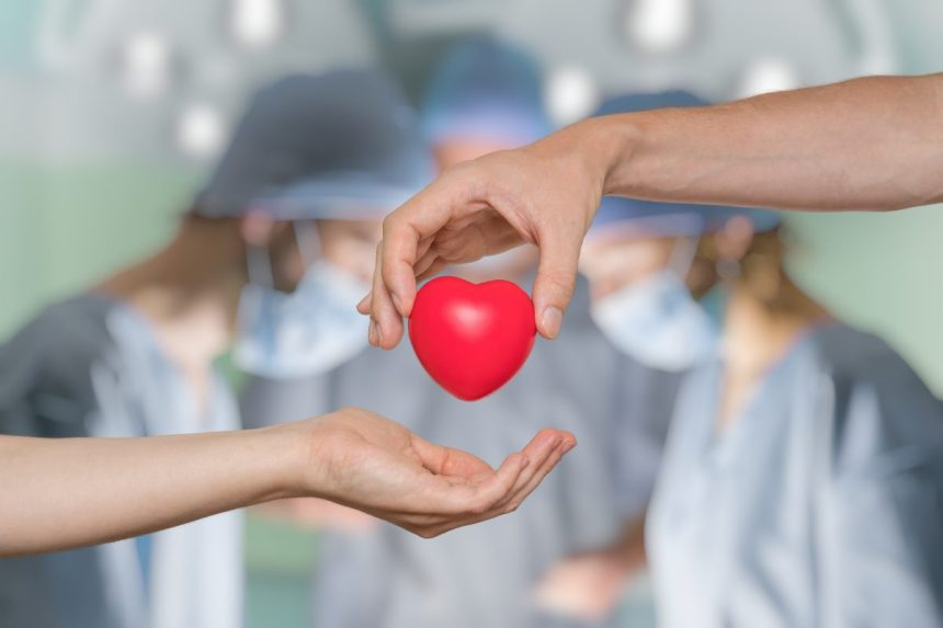 Gravir des montagnes en hommage au don d'organe