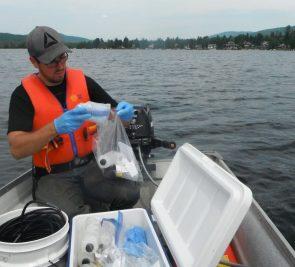 Une première diagnose en 15 ans au lac Saint-Joseph