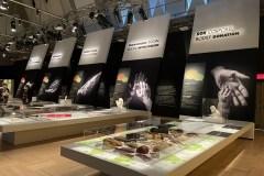 La générosité mise en lumière au Musée de la civilisation