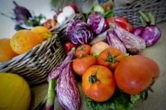 "Frutta e verdura ""brutte"", Ue scarta 50 milioni di tonnellate l'anno"