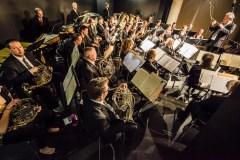 Concerti, mostre, attività